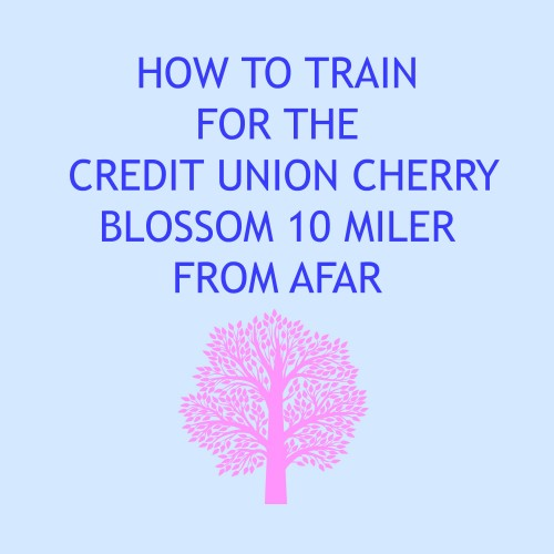 How to Train for the Credit Union Cherry Blossom 10 Miler From Afar